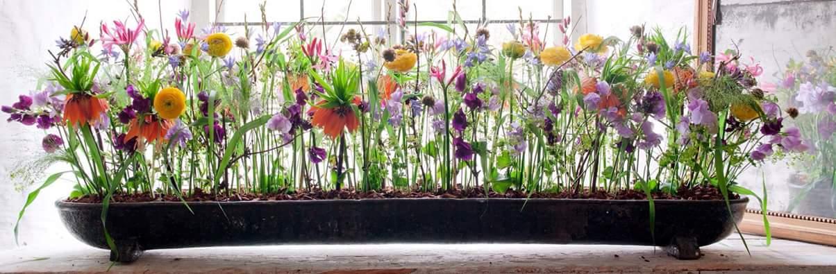 Blomster i skjønn forening